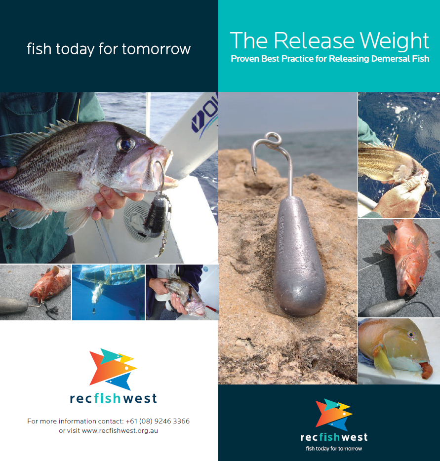 Release weight