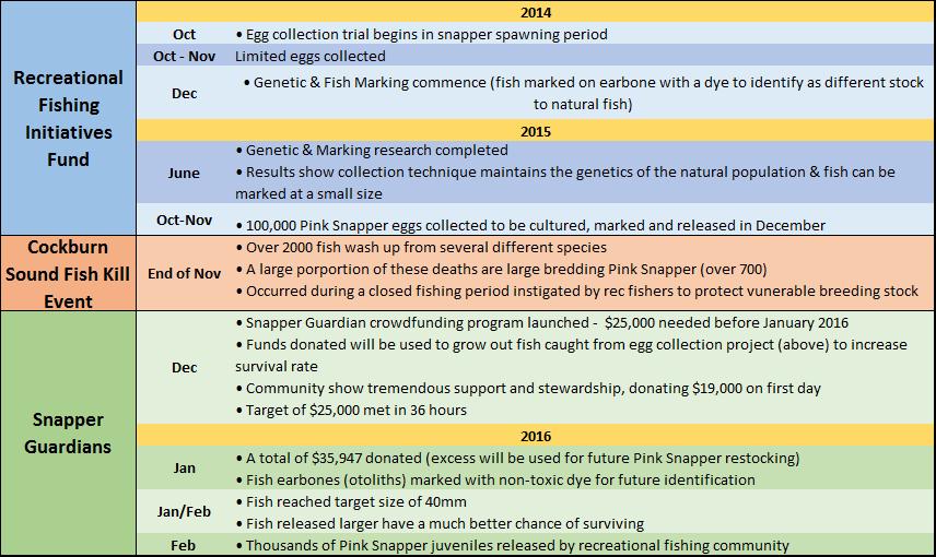 snapper timeline