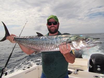 span mackerel