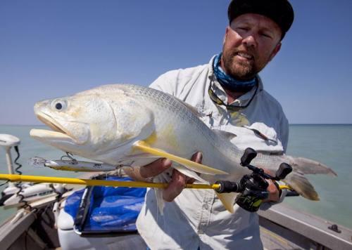 broome fishing club threadfin salmon