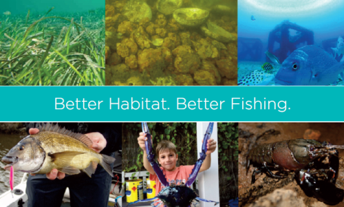 fishers for habitat poster