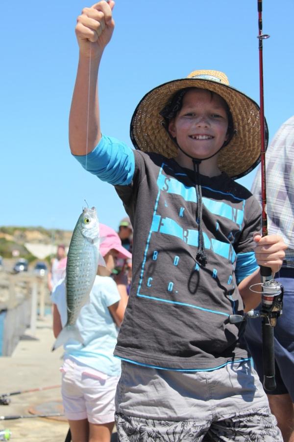 herring bremer kid